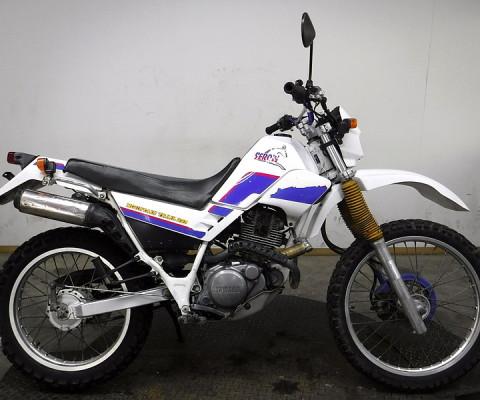 SEROW225-2