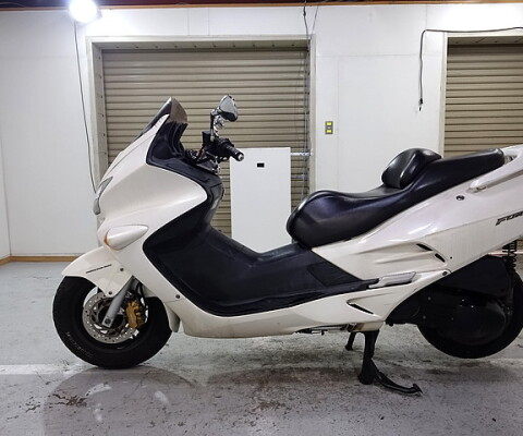 FORZA 250X