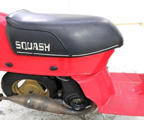 SQUASH50