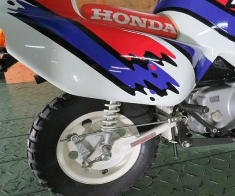 MONKEY BAJA AFRICA50