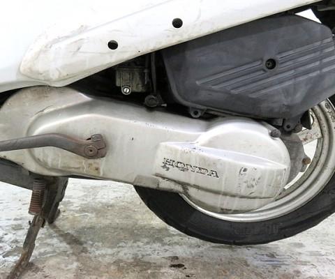 PAL50
